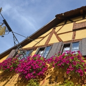 zur_hoell_rothenburg_001
