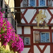 zur_hoell_rothenburg_002